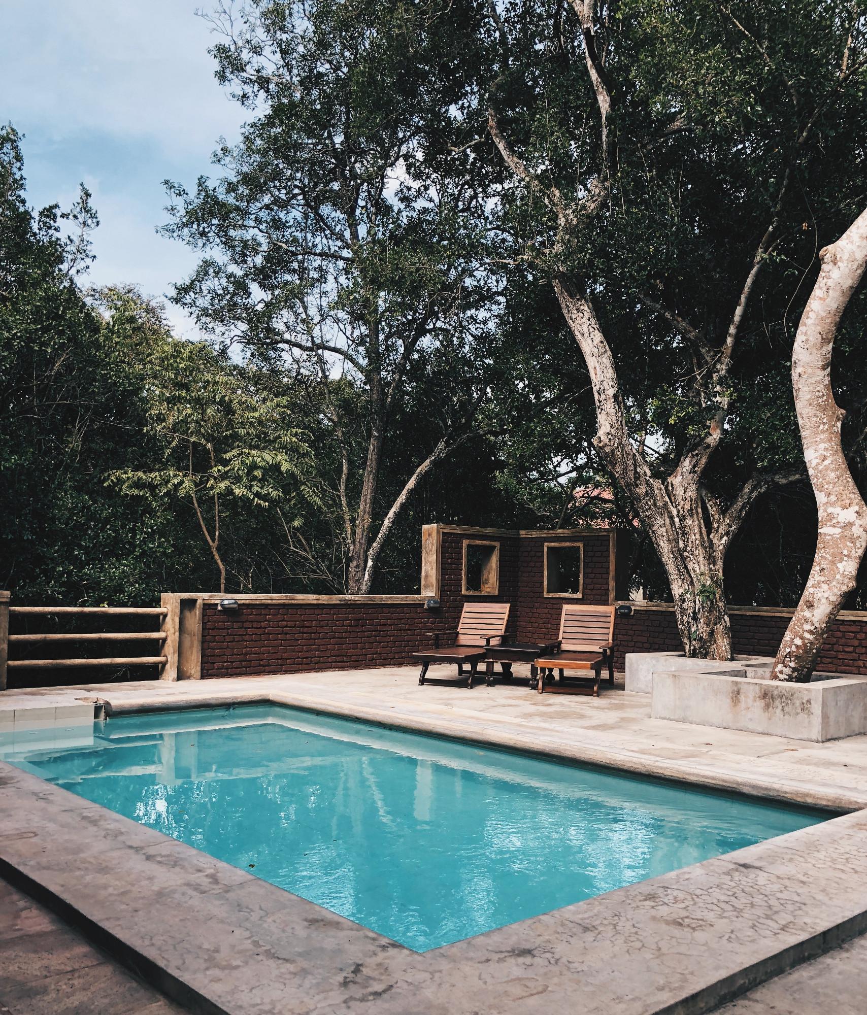 extérieur avec piscine terrasse en béton transats en bois sous les arbres